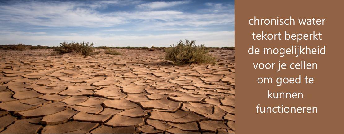 Chronisch water tekort leidt tot gezondheidsklachten
